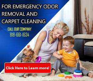 Blog | Carpet Cleaning Chatsworth, CA